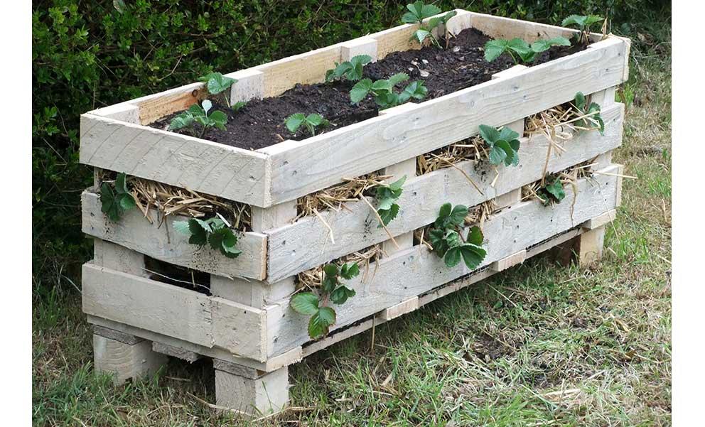 Fioriera per fragole o siepe idee pallet for Arredamento da giardino con bancali